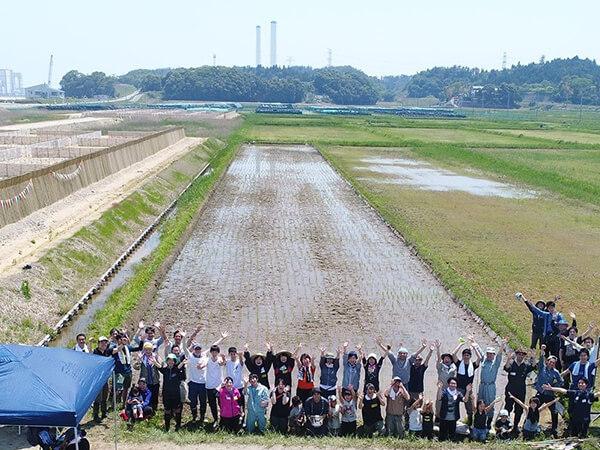 米づくりのチャレンジ